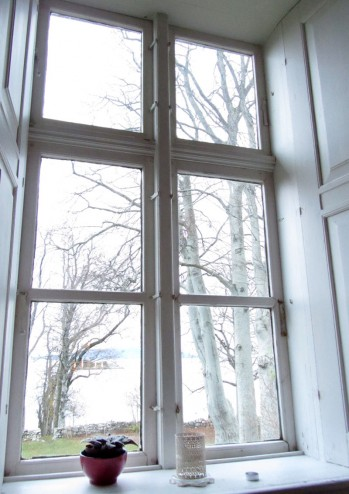 northern window