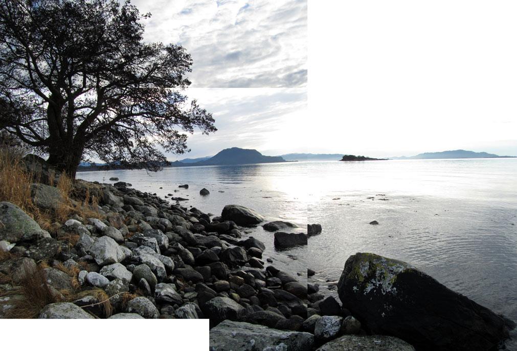 on the coast at halsnøy